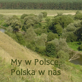My w Polsce, Polska w nas